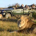 Туры в Африку. Путешествие в ЮАР.
